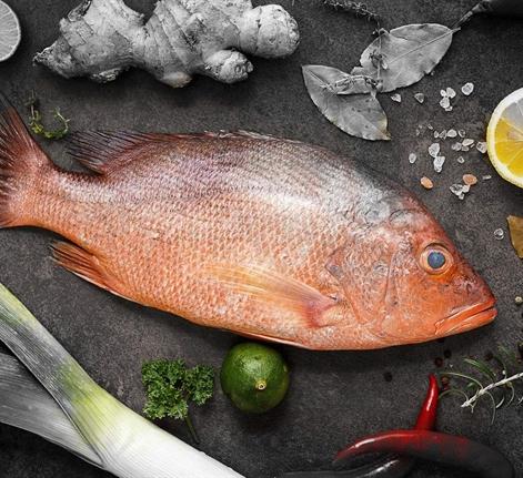 Seafood Market 0123